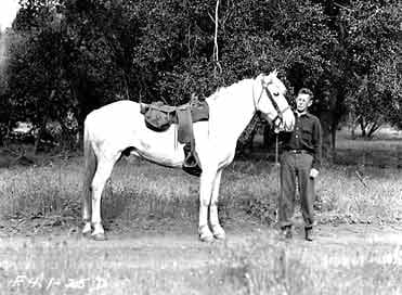 Chief Spencer Turner holding the reins of a white saddled horse.